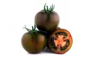 Описание и советы по выращиванию томатов сорта «кумато»