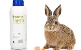 Все о применении чиктоника для кроликов