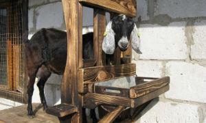 Самостоятельная сборка станка для доения коз