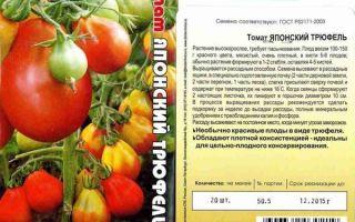 Характеристики и выращивание томатов «спрут»